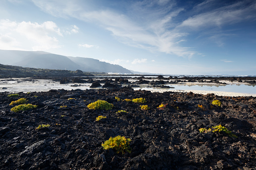 Volcanic Landscape「Volcanic rocks on beach with village and cliffs in the distance.」:スマホ壁紙(12)