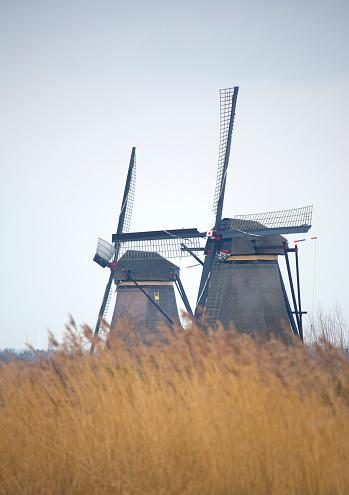 Netherlands「View of windmills.」:スマホ壁紙(5)
