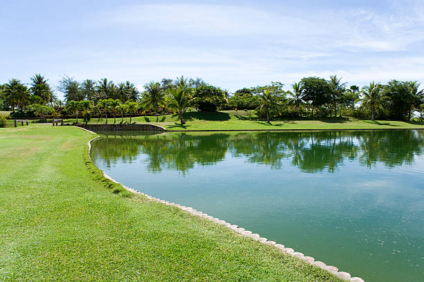 Pond in the golf course, Saipan, USA :スマホ壁紙(壁紙.com)