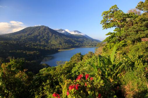 Indonesia「Indonesia, Bali, Central Mountains, Munduk」:スマホ壁紙(4)