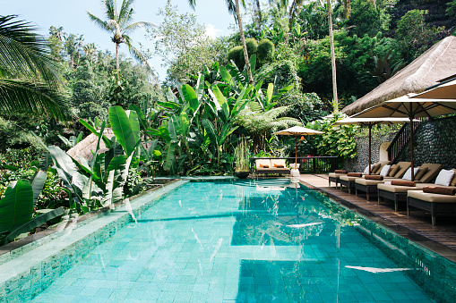 Resort「Indonesia, Bali, tropical swimming pool」:スマホ壁紙(11)