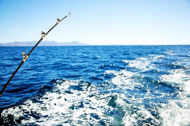 Deep Sea fishing pole:スマホ壁紙(壁紙.com)