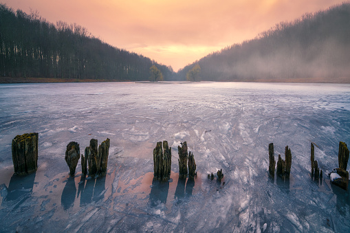 Wooden Post「Lake Tervuren in winter, Flanders, Belgium」:スマホ壁紙(10)