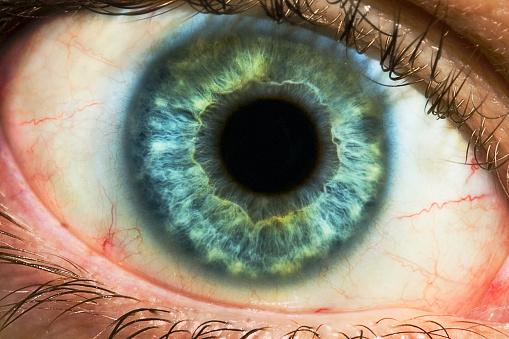 Iris - Eye「Extreme Closeup」:スマホ壁紙(8)