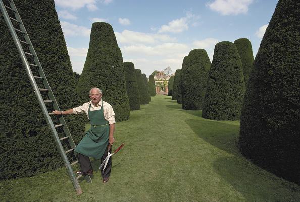 Large Group Of Objects「Head Gardener」:写真・画像(18)[壁紙.com]