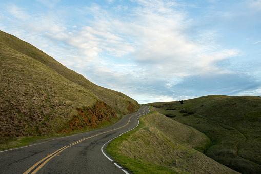 Rolling Landscape「Winding road on hill」:スマホ壁紙(13)