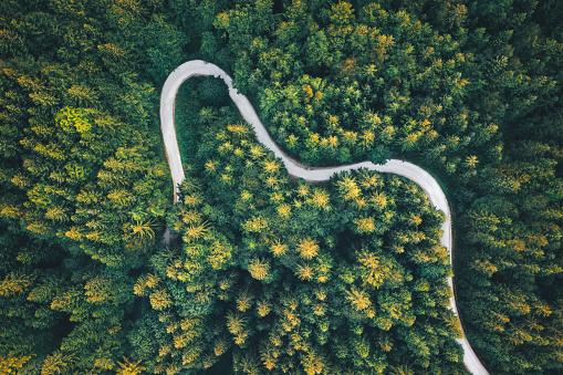 Wilderness「Winding Road」:スマホ壁紙(6)
