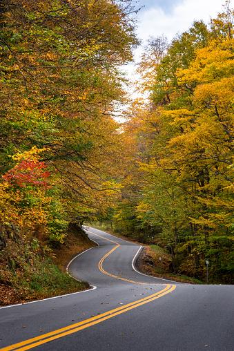 サトウカエデ「winding road in Vermont」:スマホ壁紙(4)