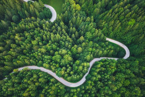 Winding Road:スマホ壁紙(壁紙.com)