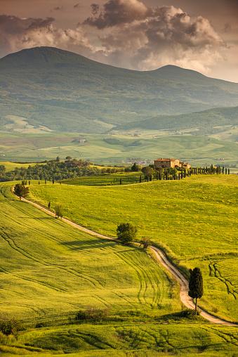 Monte Amiata「Winding road in Tuscany」:スマホ壁紙(1)
