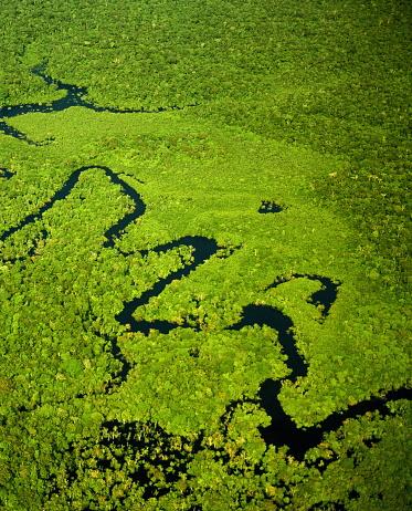 Amazon River「Brazil, Amazonas, tributary of Amazon River, aerial view」:スマホ壁紙(8)