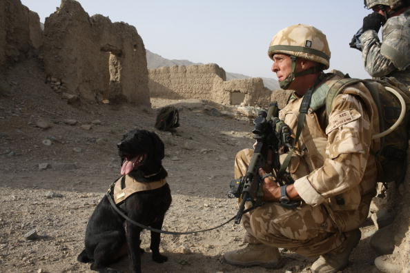 Taliban「British Paratroopers Conduct Operation To Capture Taliban Leaders」:写真・画像(3)[壁紙.com]
