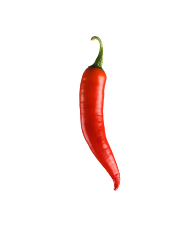 Chili Pepper「Red chilli pepper」:スマホ壁紙(0)