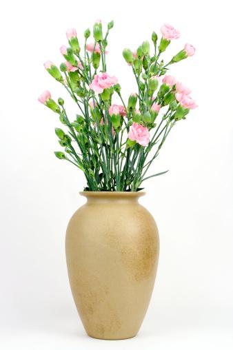 カーネーション「花瓶 Carnations 、ピンク」:スマホ壁紙(2)
