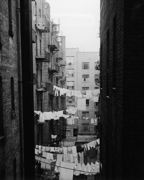 Apartment「NYC Apartment Courtyards」:写真・画像(9)[壁紙.com]