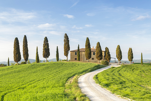 Farmhouse「A farmhouse in the Val d'Orcia of Tuscany.」:スマホ壁紙(18)