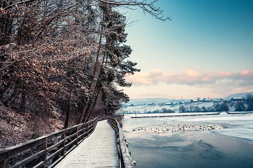Celje「Winter By The Lake」:スマホ壁紙(11)
