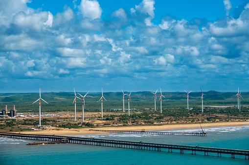 Tropical Pattern「Wind Station in Aracaju」:スマホ壁紙(18)
