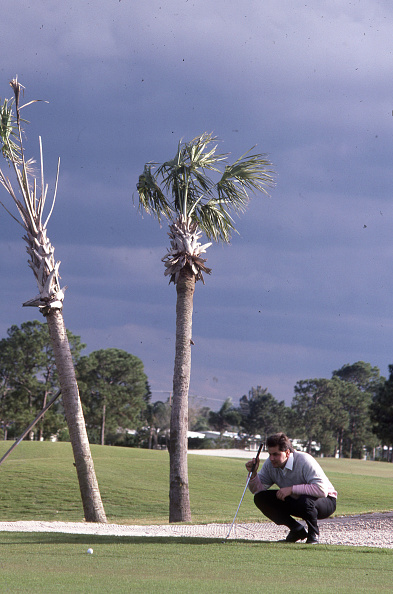 Philippe Le Tellier「Golf In Florida」:写真・画像(10)[壁紙.com]