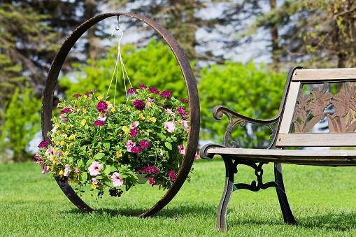 ペチュニア「フラワーバスケットに飾るの車輪のガーデンベンチ」:スマホ壁紙(18)