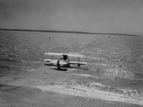 Shallow「Flying Walrus」:写真・画像(2)[壁紙.com]