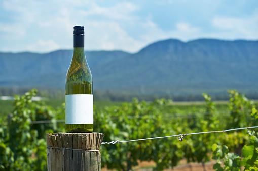 Wine Bottle「wine valley region」:スマホ壁紙(16)