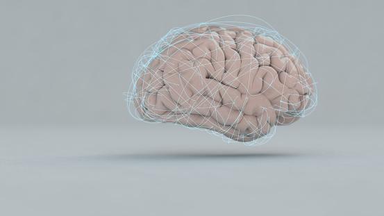 Neuroscience「Brain」:スマホ壁紙(17)