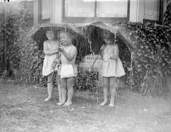 雨「Summer Shower」:写真・画像(7)[壁紙.com]