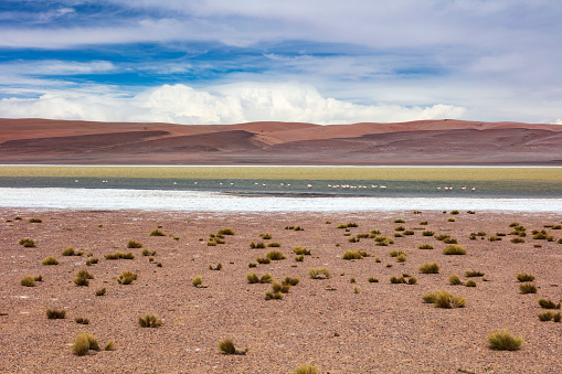Atacama Desert「Remotely located Salar de Aguas Calientes at 3,950m in Atacama Desert, Chile, January 19, 2018」:スマホ壁紙(5)