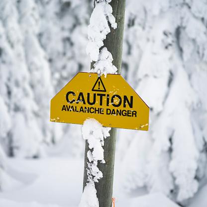 Ski Resort「Yellow caution sign warning of avalanche danger」:スマホ壁紙(15)