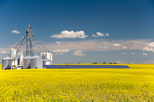 Farm「Canola Grain Silo Solar Panel」:スマホ壁紙(16)