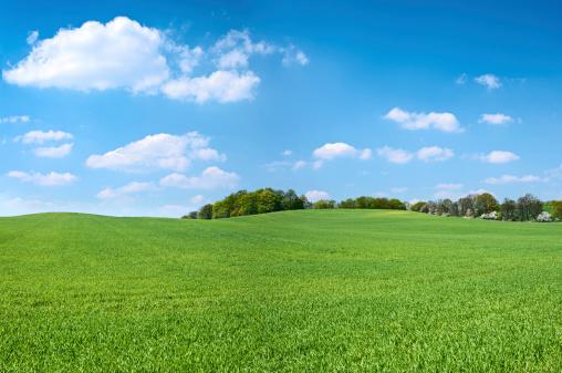 USA「Spring panorama 46MPix XXXXL - meadow, blue sky, clouds」:スマホ壁紙(5)