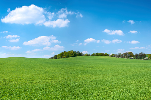 Farm「Spring panorama 46MPix XXXXL - meadow, blue sky, clouds」:スマホ壁紙(9)