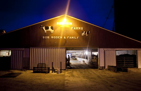 Florida - US State「U.S. Dairy Farming Still A Struggle Despite Rise In Milk Prices」:写真・画像(1)[壁紙.com]