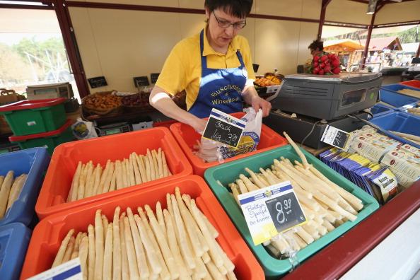 White Asparagus「Workers Harvest Asparagus In Beelitz Region」:写真・画像(8)[壁紙.com]
