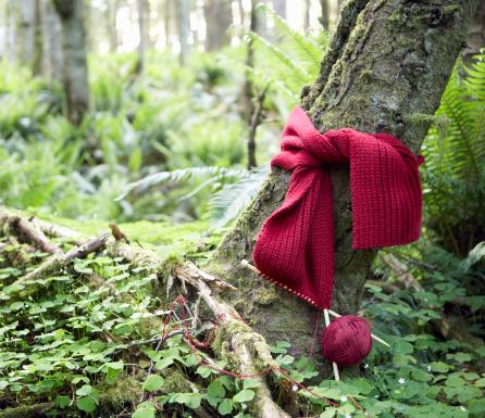 スカーフ「Red scarf being knit around trunk of tree in forest」:スマホ壁紙(5)