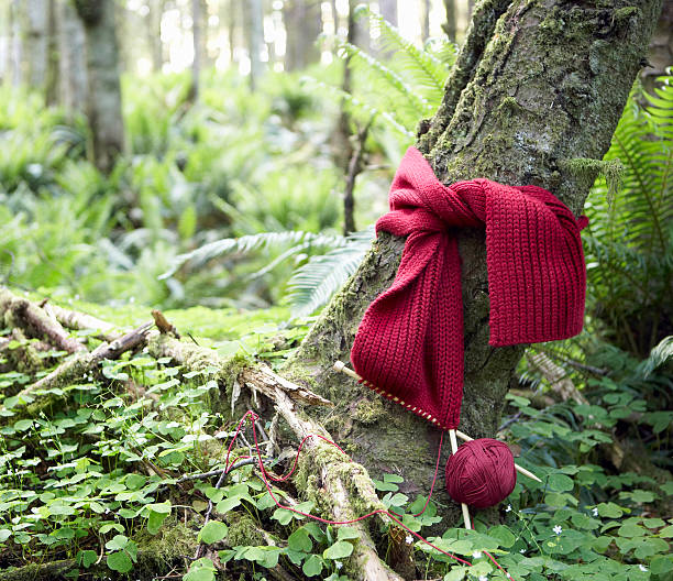 Red scarf being knit around trunk of tree in forest:スマホ壁紙(壁紙.com)