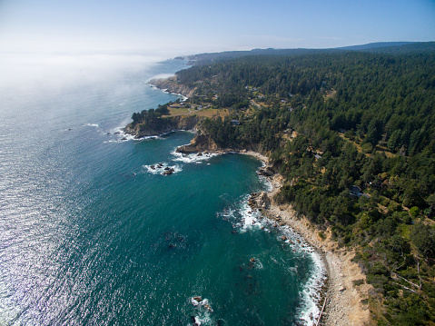 California State Route 1「Aerial of northern California coast with forest and ocean」:スマホ壁紙(18)