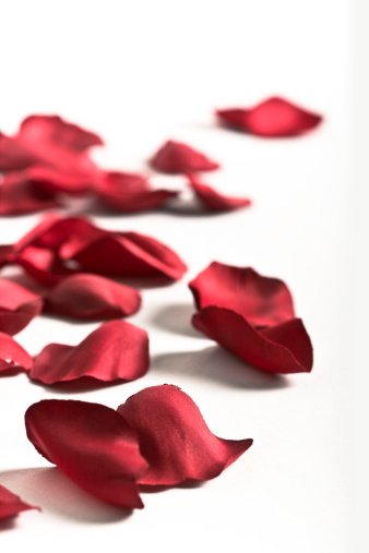 薔薇「ローズの葉」:スマホ壁紙(10)