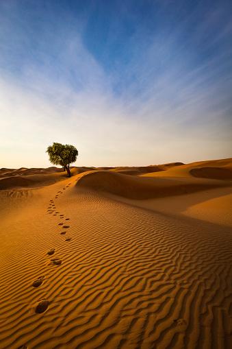 胸を打つ「砂漠、オマーン ・ スルタン国から抜け出す方法」:スマホ壁紙(18)