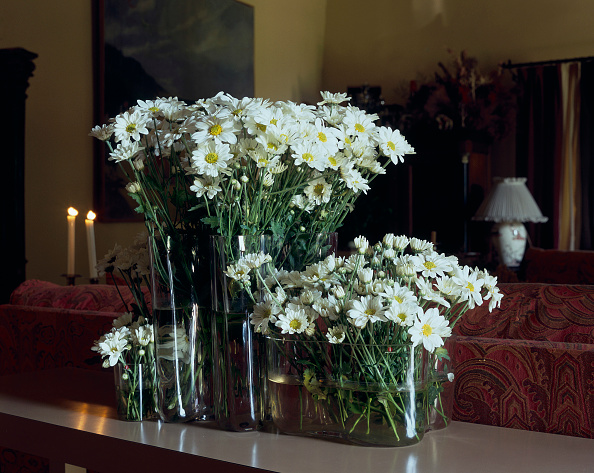 Vase「View of flower vases decorating a room」:写真・画像(7)[壁紙.com]