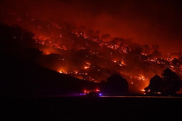 Australia「NSW On Severe Bushfire Alert As Weather Conditions Worsen」:写真・画像(15)[壁紙.com]