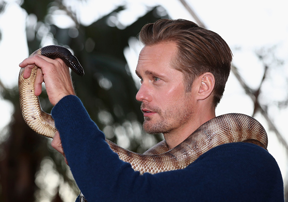animal「The Legend of Tarzan Alexander Skarsgard Photo Call」:写真・画像(5)[壁紙.com]