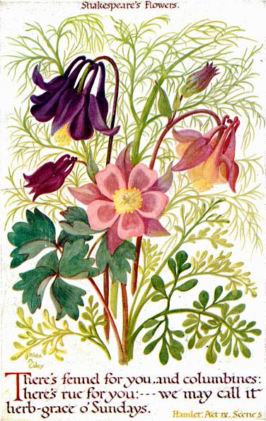 Elizabethan Style「William Shakespeare 's flowers」:写真・画像(16)[壁紙.com]
