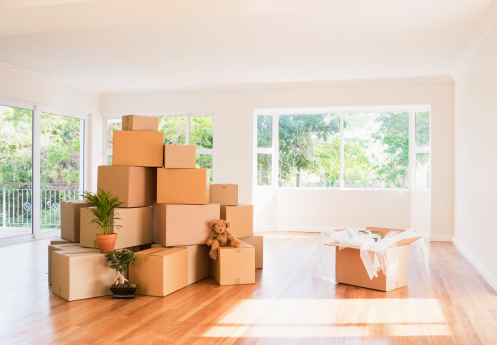 Stuffed Animals「Boxes stacked in living room of new house」:スマホ壁紙(14)