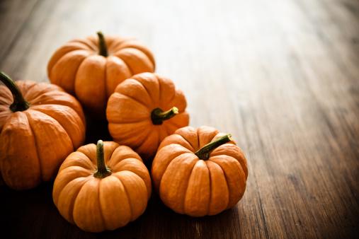 Organic「Pumpkins」:スマホ壁紙(9)