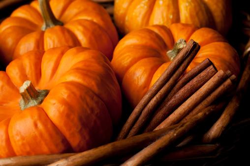 Cinnamon「Pumpkins」:スマホ壁紙(12)