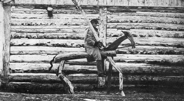 飼育動物「Punishment Horse」:写真・画像(18)[壁紙.com]