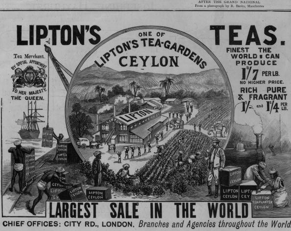 Sri Lanka「Lipton's Tea」:写真・画像(1)[壁紙.com]