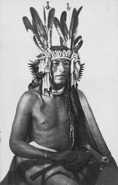 Tanka「Sioux Chief」:写真・画像(4)[壁紙.com]